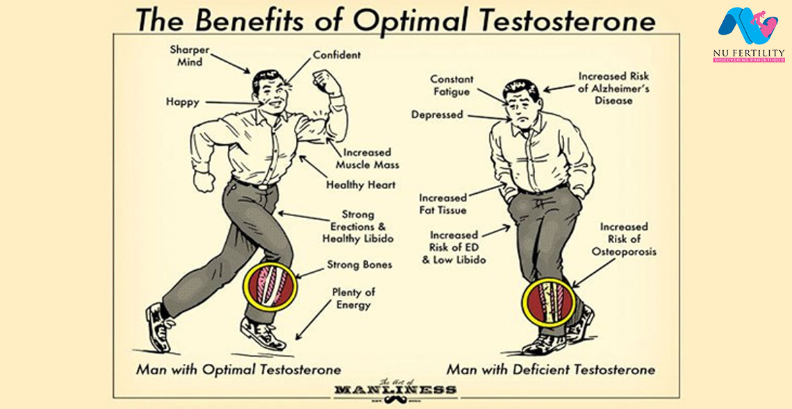 Low Testosterone is Correlated With the Effects of Aging